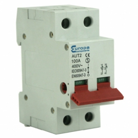 100A 2 Pole Mainswitch Isolator